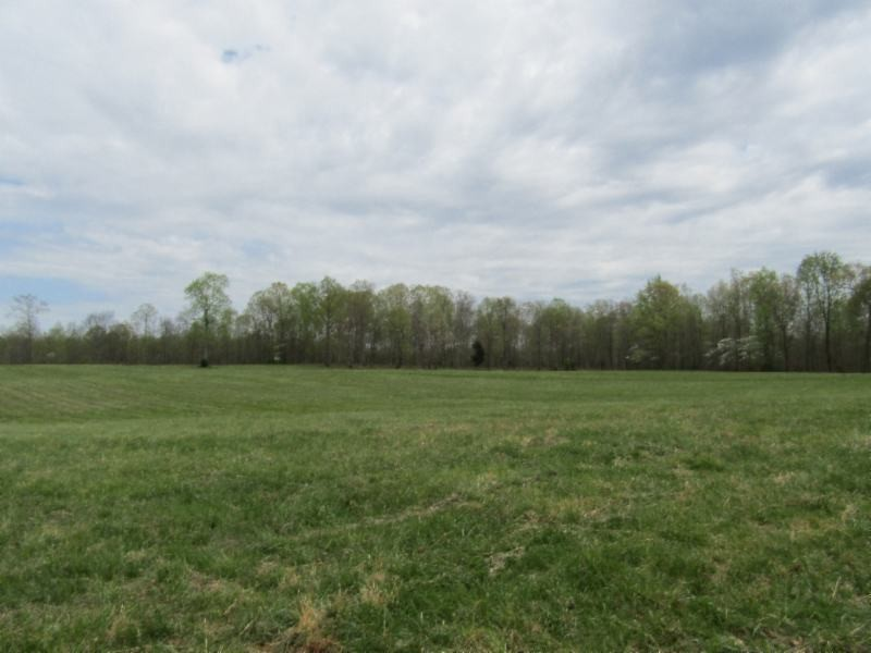 33 .50ac Mustang Lane Property Photo