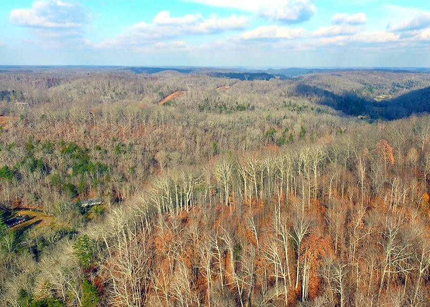 0 Indian Spgs Rd Property Photo - Pegram, TN real estate listing