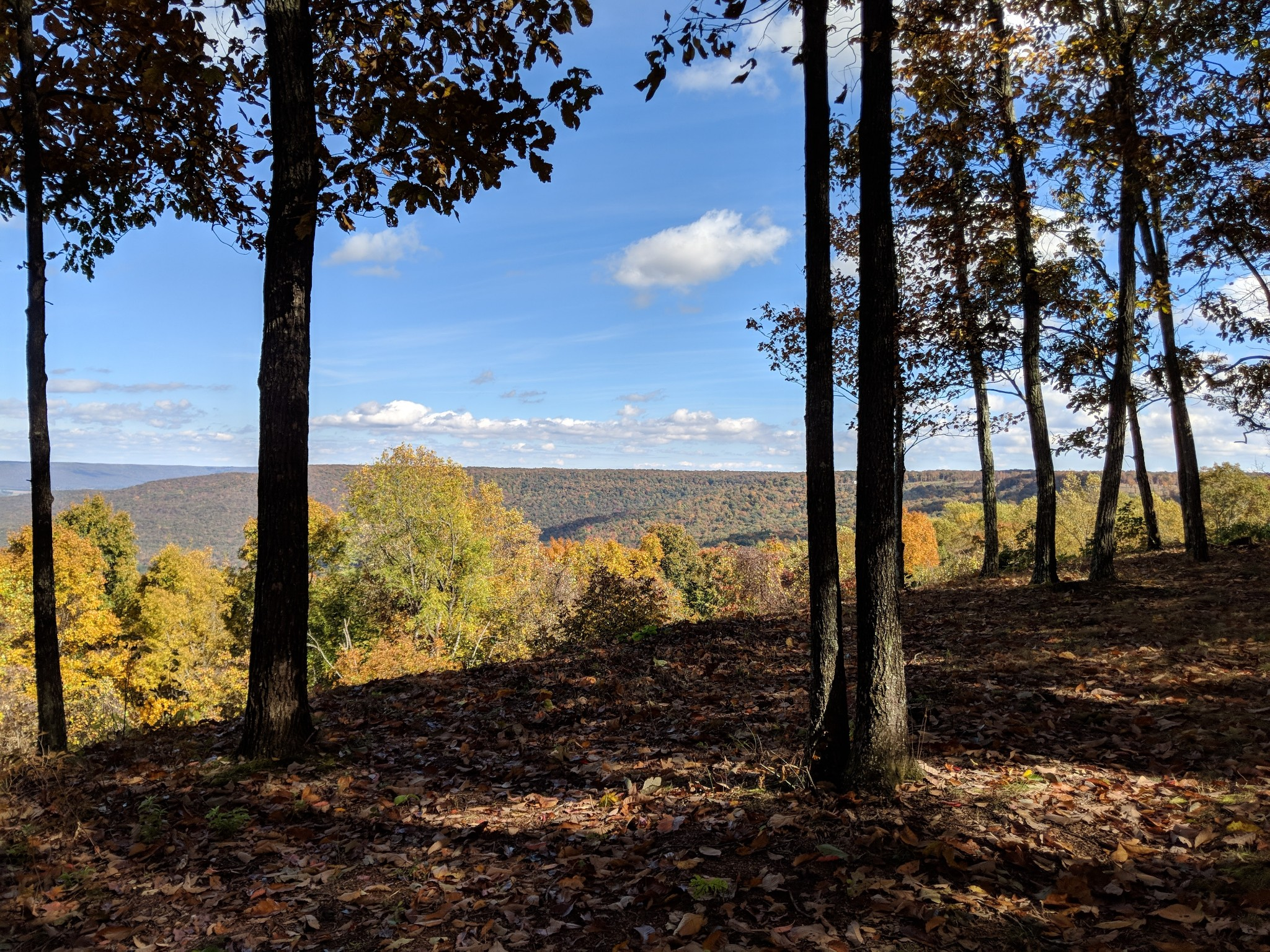 0 Fawn Dr Property Photo - Belvidere, TN real estate listing