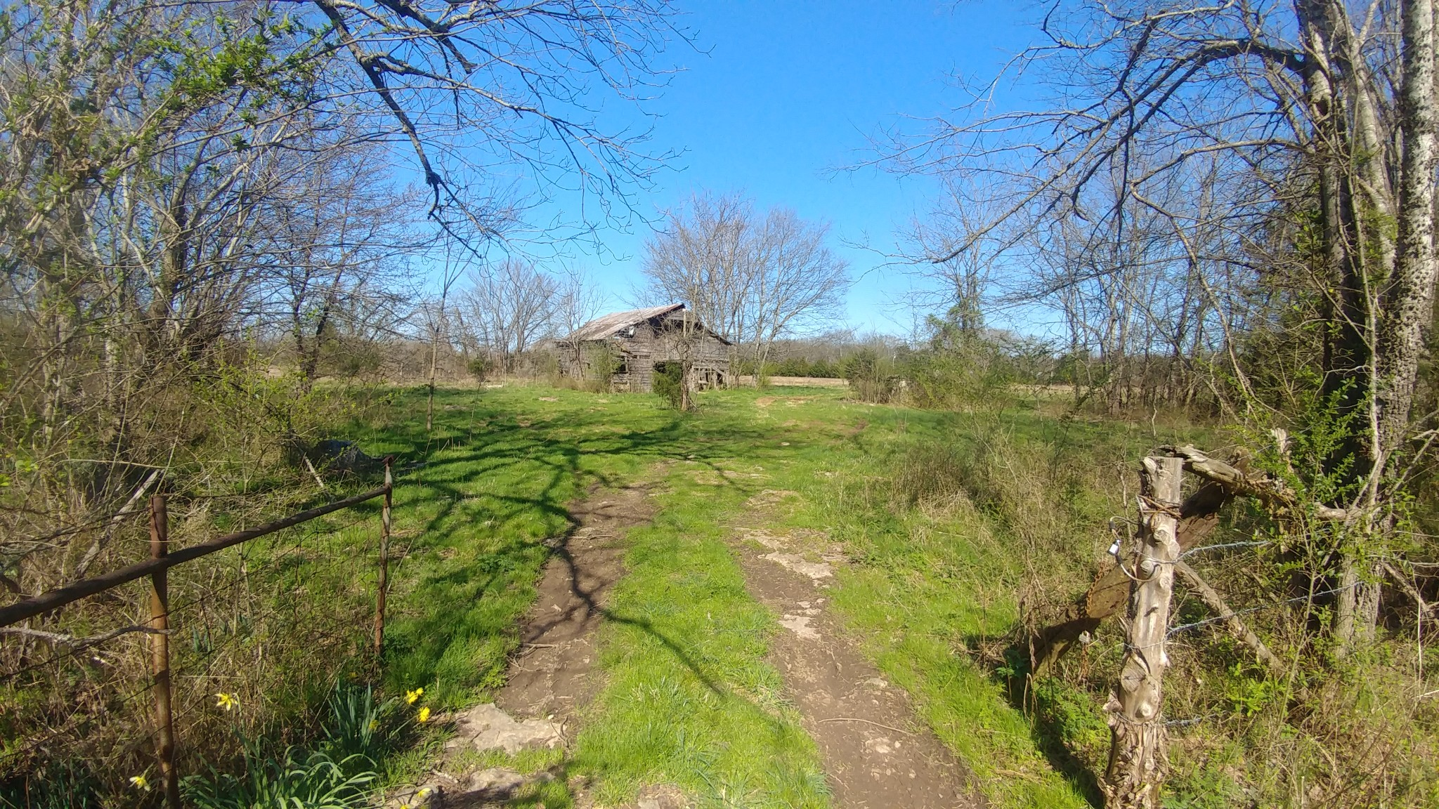 1788 Wade Brown Rd Property Photo - Lewisburg, TN real estate listing
