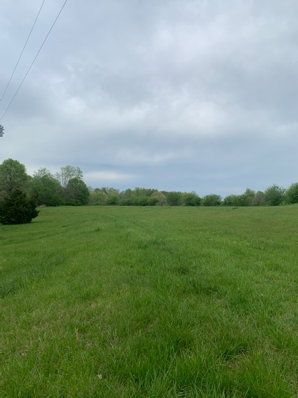 21 Powell Cir Property Photo - Five Points, TN real estate listing