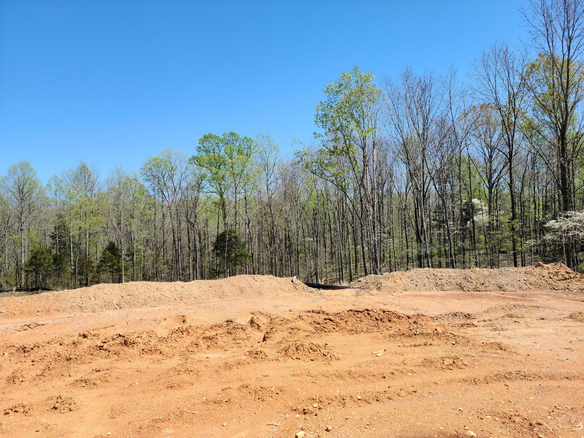 7308 Audubon Cove Property Photo - Fairview, TN real estate listing