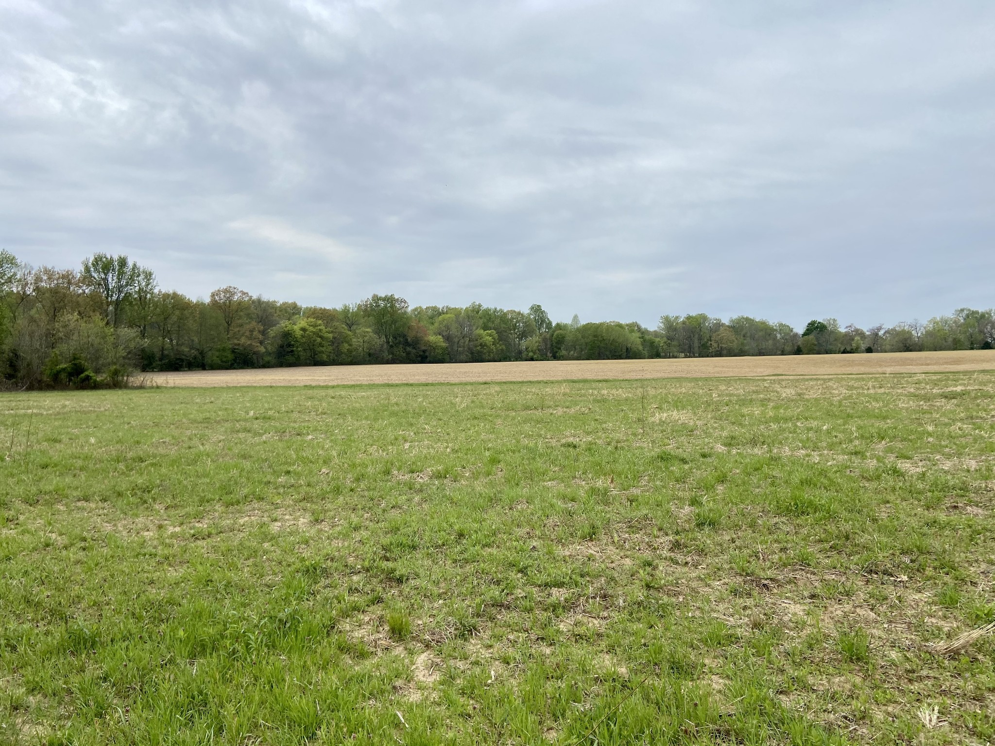 0 76 Hwy Property Photo - Cottontown, TN real estate listing