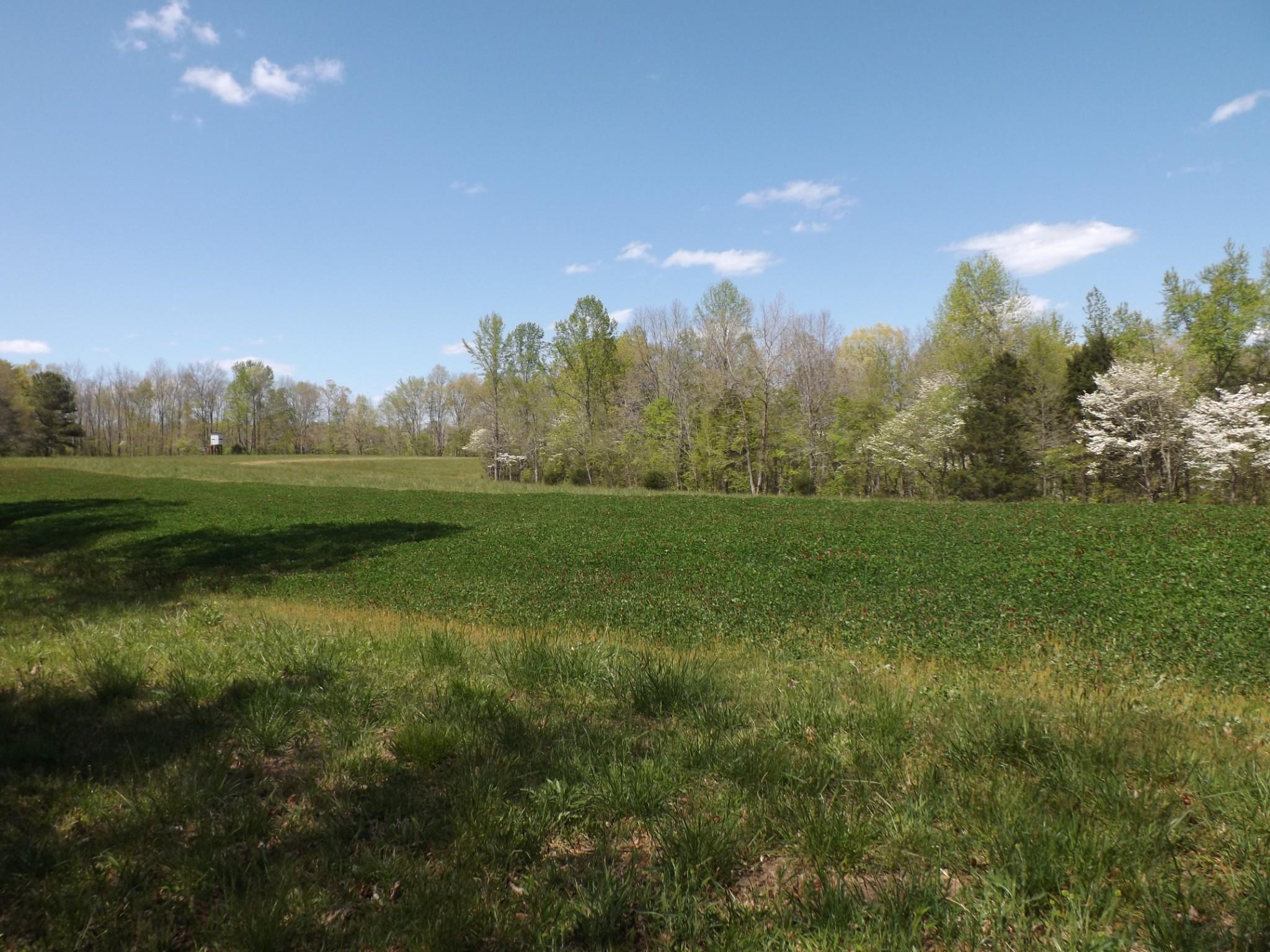 179 Anderson Creek Rd Property Photo - Ethridge, TN real estate listing