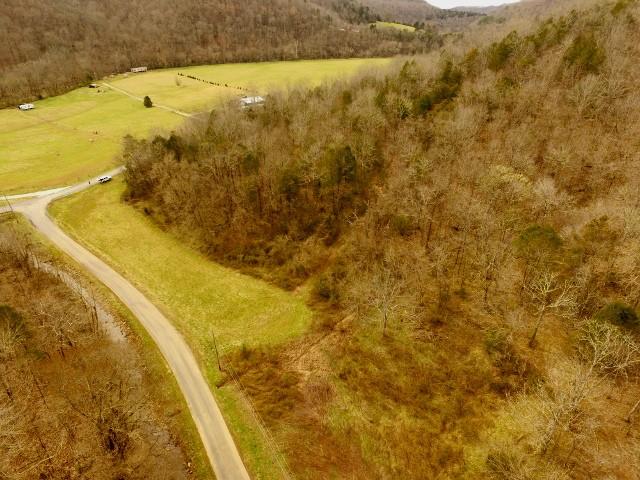 500 Ac. Wet Mill Creek Rd Property Photo