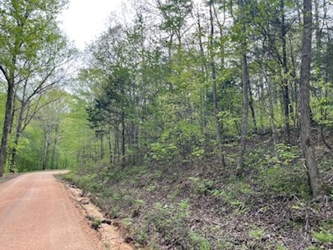 0 Brown Bnd Rd Property Photo - Only, TN real estate listing