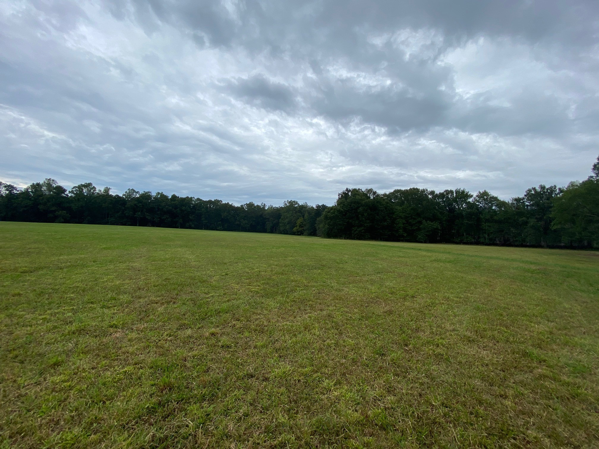 376 Ledford Mill Rd Property Photo - Normandy, TN real estate listing