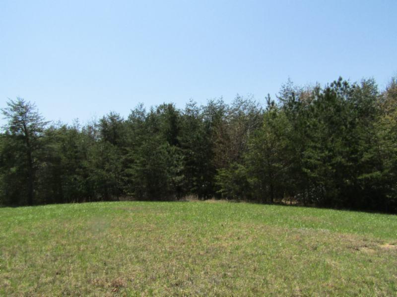 8 .64ac Nichol Creek Drive Property Photo