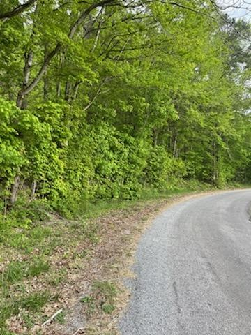 351 County Rd 116 Property Photo - Athens, TN real estate listing