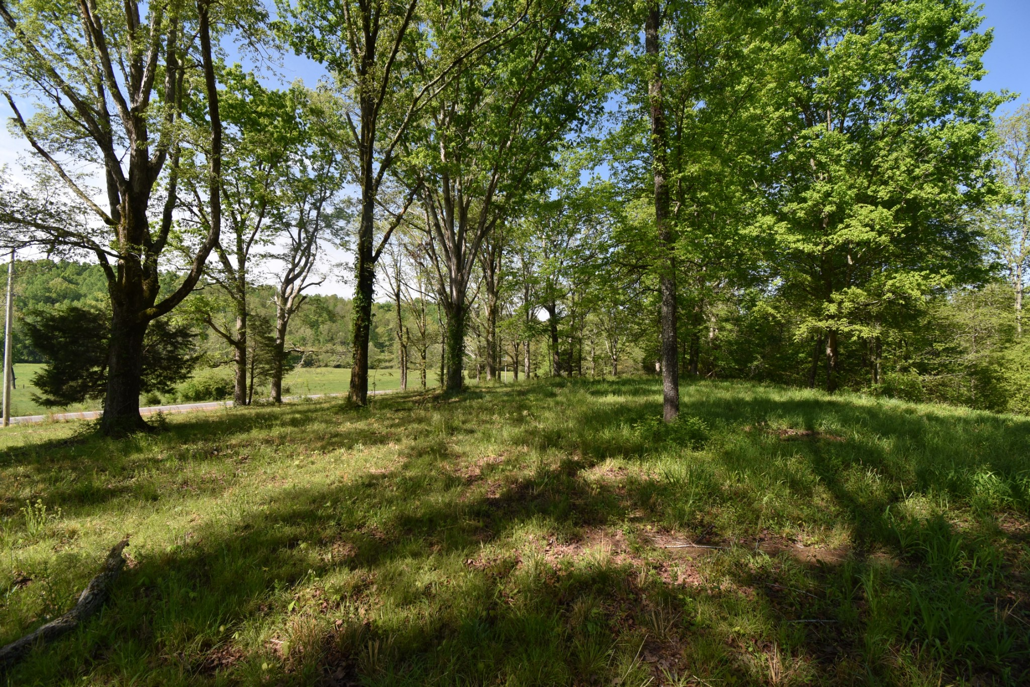 3796 Hwy 412 W Property Photo - Linden, TN real estate listing