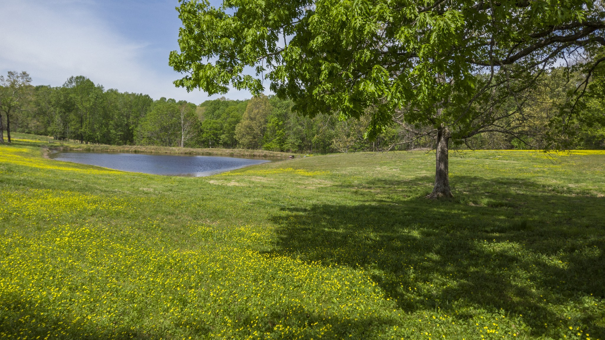 0 Hargrove Rd Property Photo - Dickson, TN real estate listing