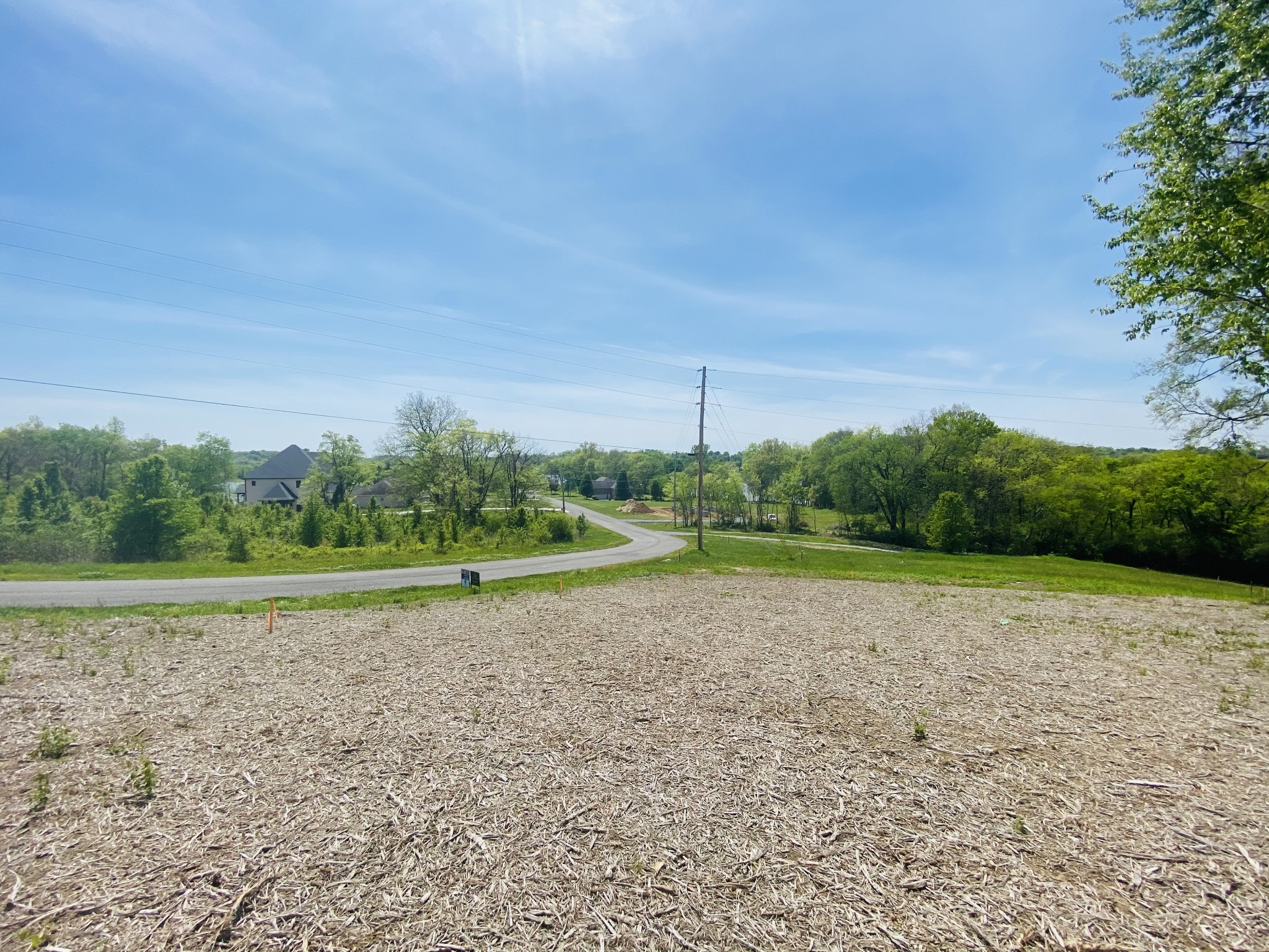 1040 Emerald Valley Dr Property Photo - Castalian Springs, TN real estate listing