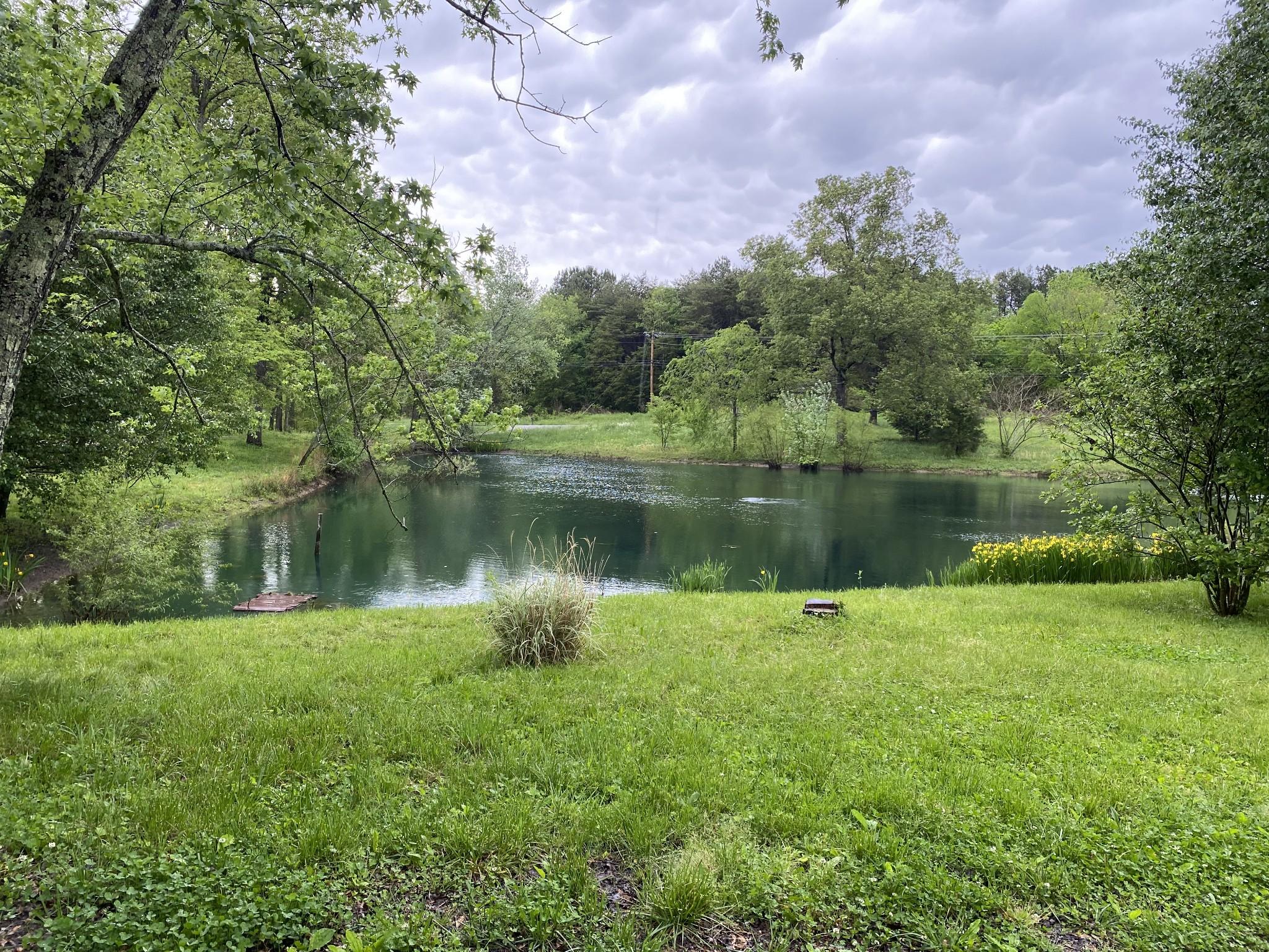 163 Newt Vanattia Rd Property Photo - Hillsboro, TN real estate listing