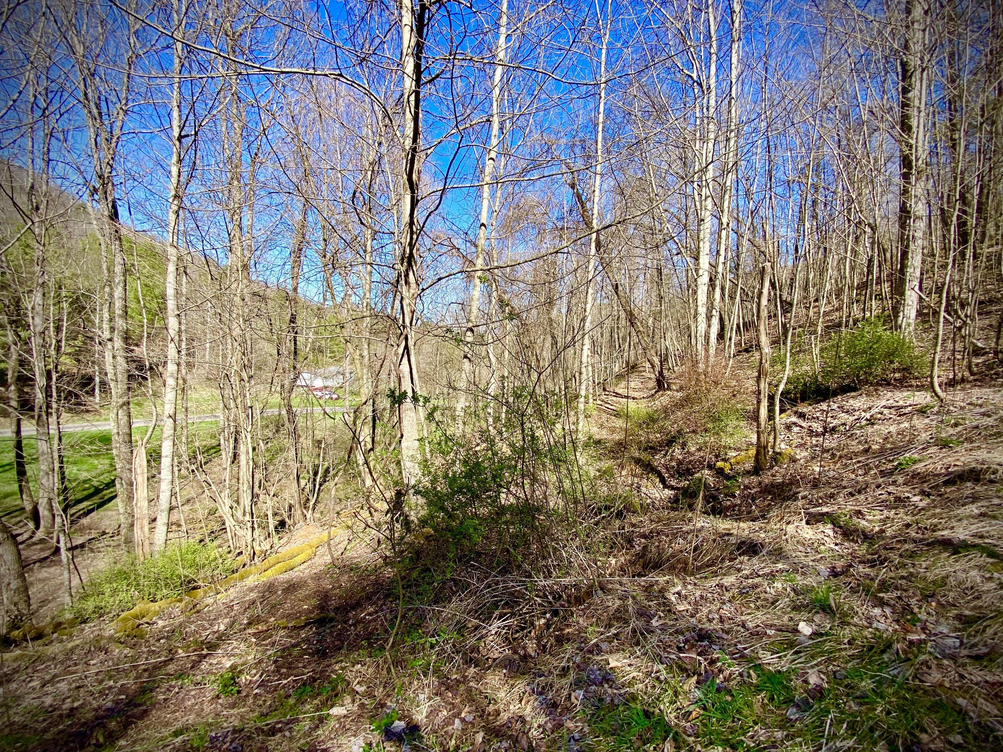 0 Little Dry Run Rd Property Photo