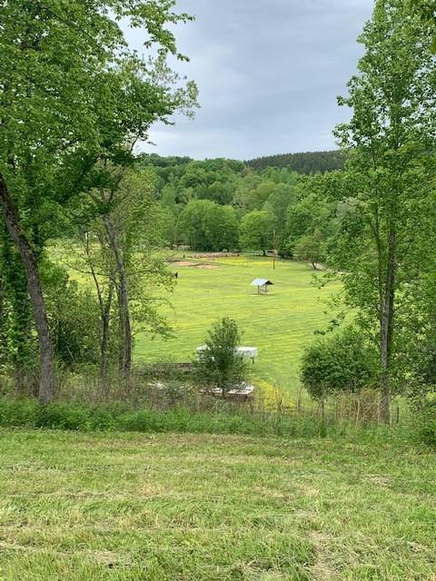 600 Mossy Bluff Rd Property Photo