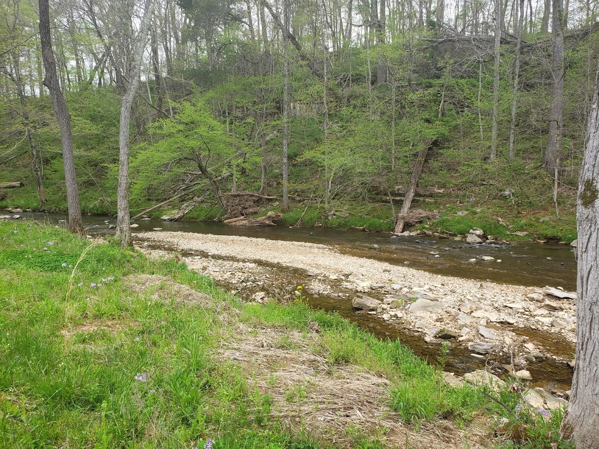 6455 Hwy 49E Property Photo - Springfield, TN real estate listing