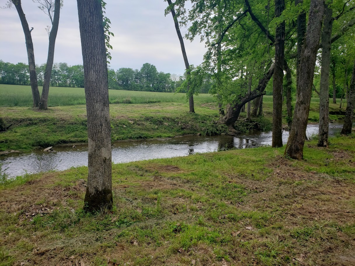 6455 Highway 49E Property Photo - Springfield, TN real estate listing
