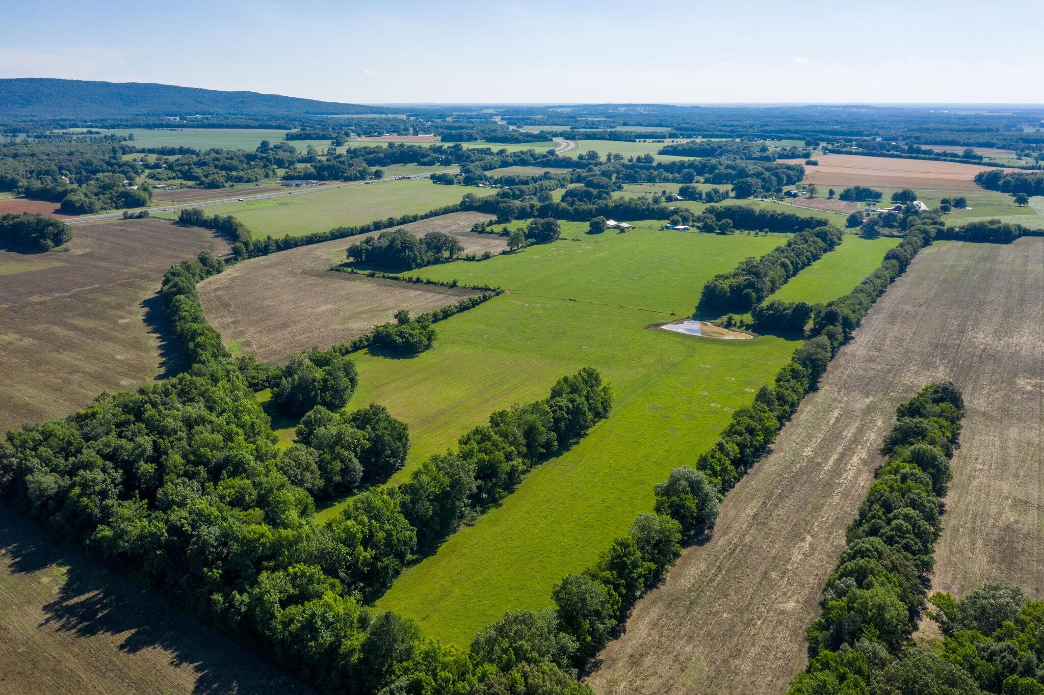 201 Buckner Farm Ln Property Photo
