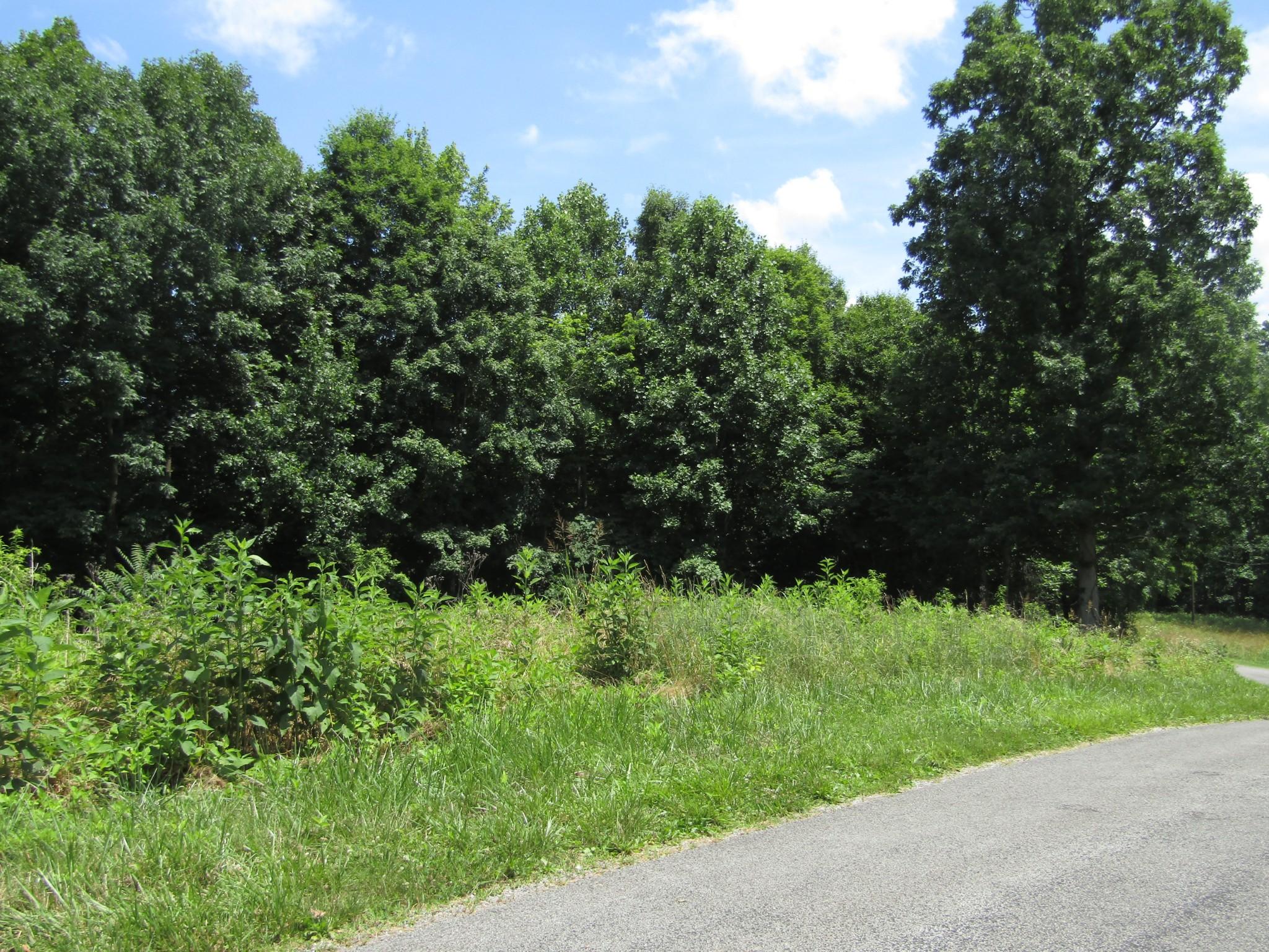 62 Tick Rd Property Photo