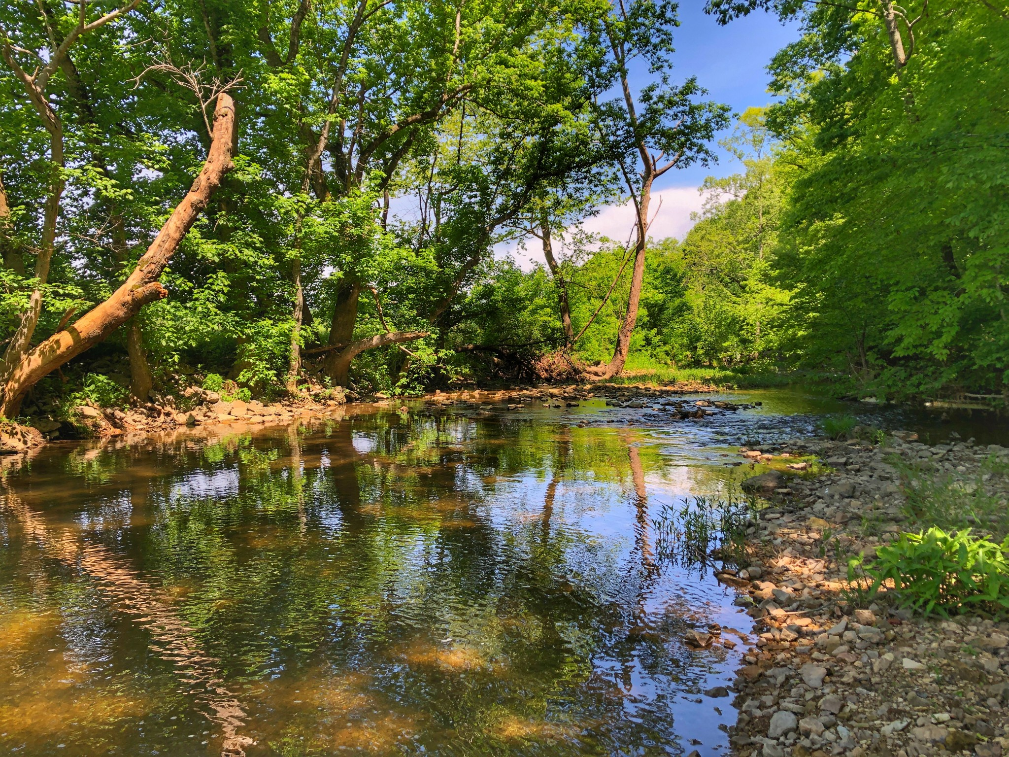 0 Jones Creek Road -tract 7a Property Photo
