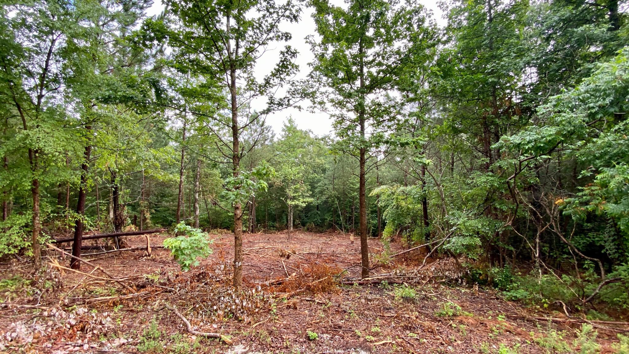 24 Riverwood Hills Property Photo