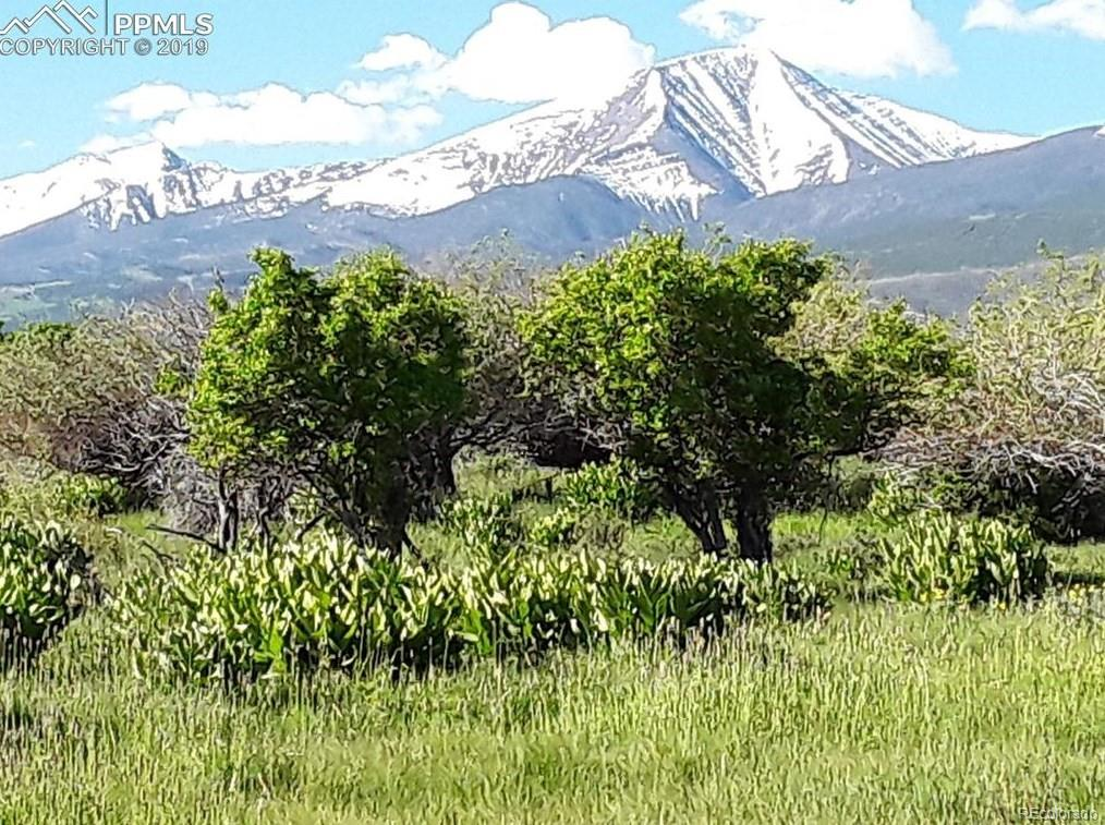 230 Running Bear, Cotopaxi, CO 81223 - Cotopaxi, CO real estate listing