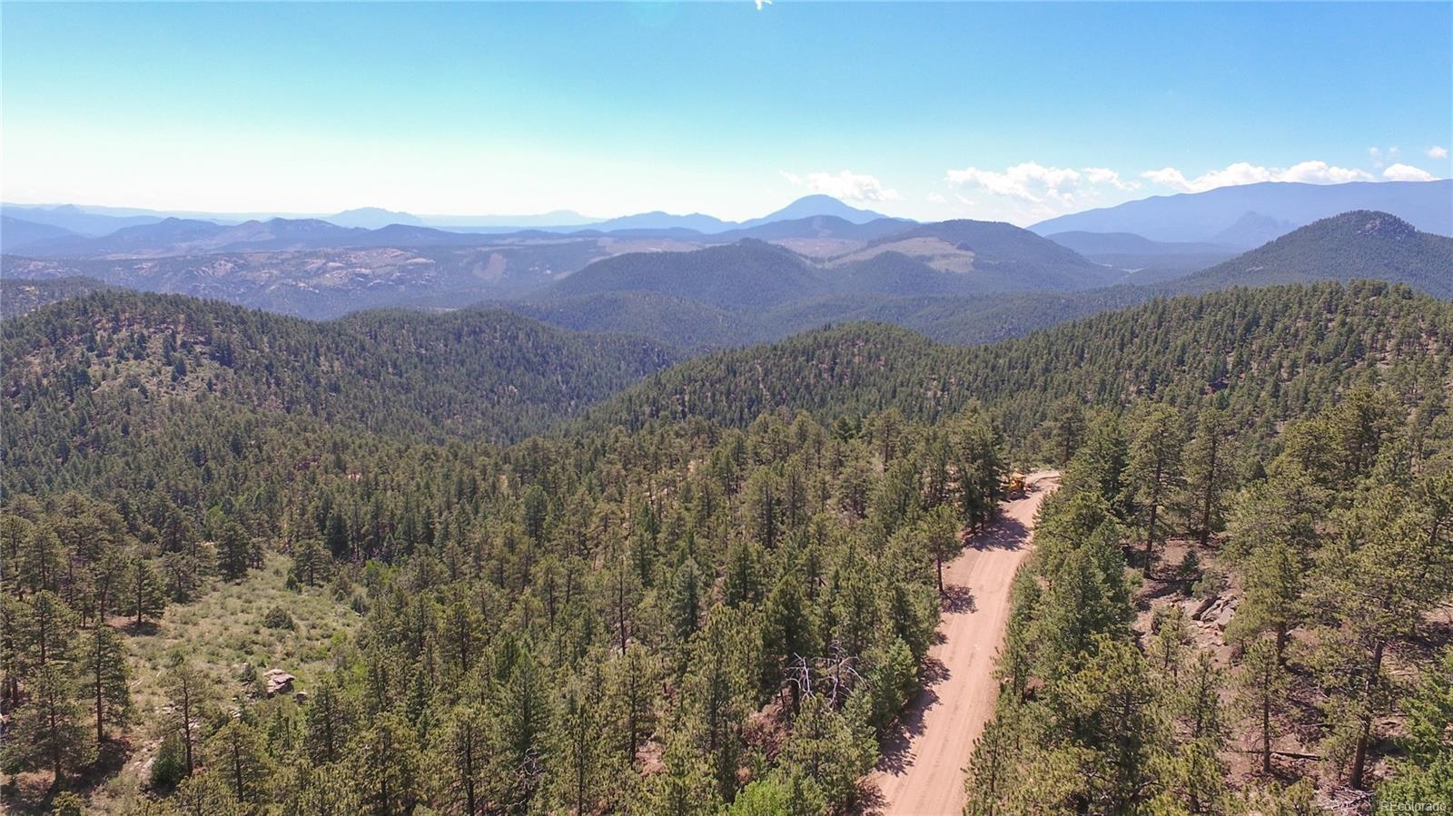 266 Ptarmigan Trail, Bailey, CO 80421 - Bailey, CO real estate listing