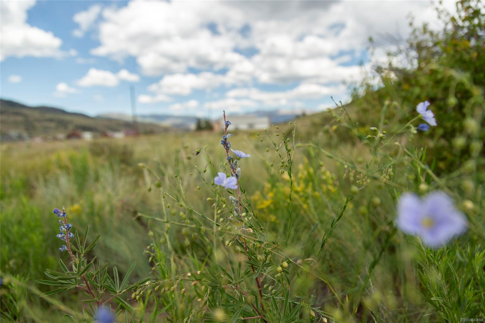 2050 Middle Creek Road, Creede, CO 81130 - Creede, CO real estate listing
