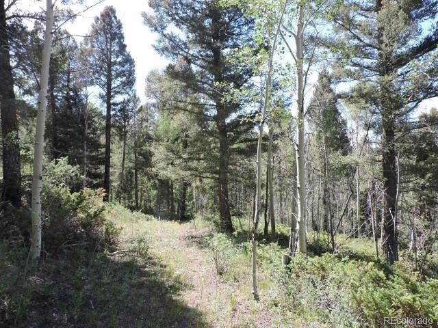 6150 Wood Road, Fort Garland, CO 81133 - Fort Garland, CO real estate listing