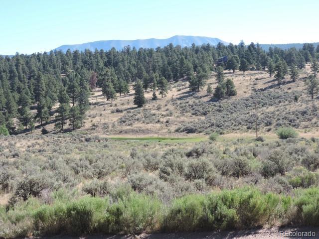 435 Forbes Park Road, Fort Garland, CO 81133 - Fort Garland, CO real estate listing