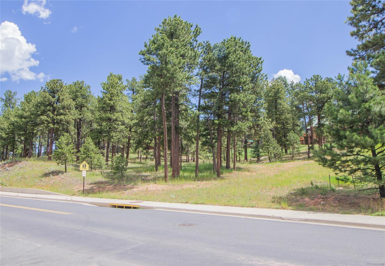 0 S Baldwin Street, Woodland Park, CO 80863 - Woodland Park, CO real estate listing