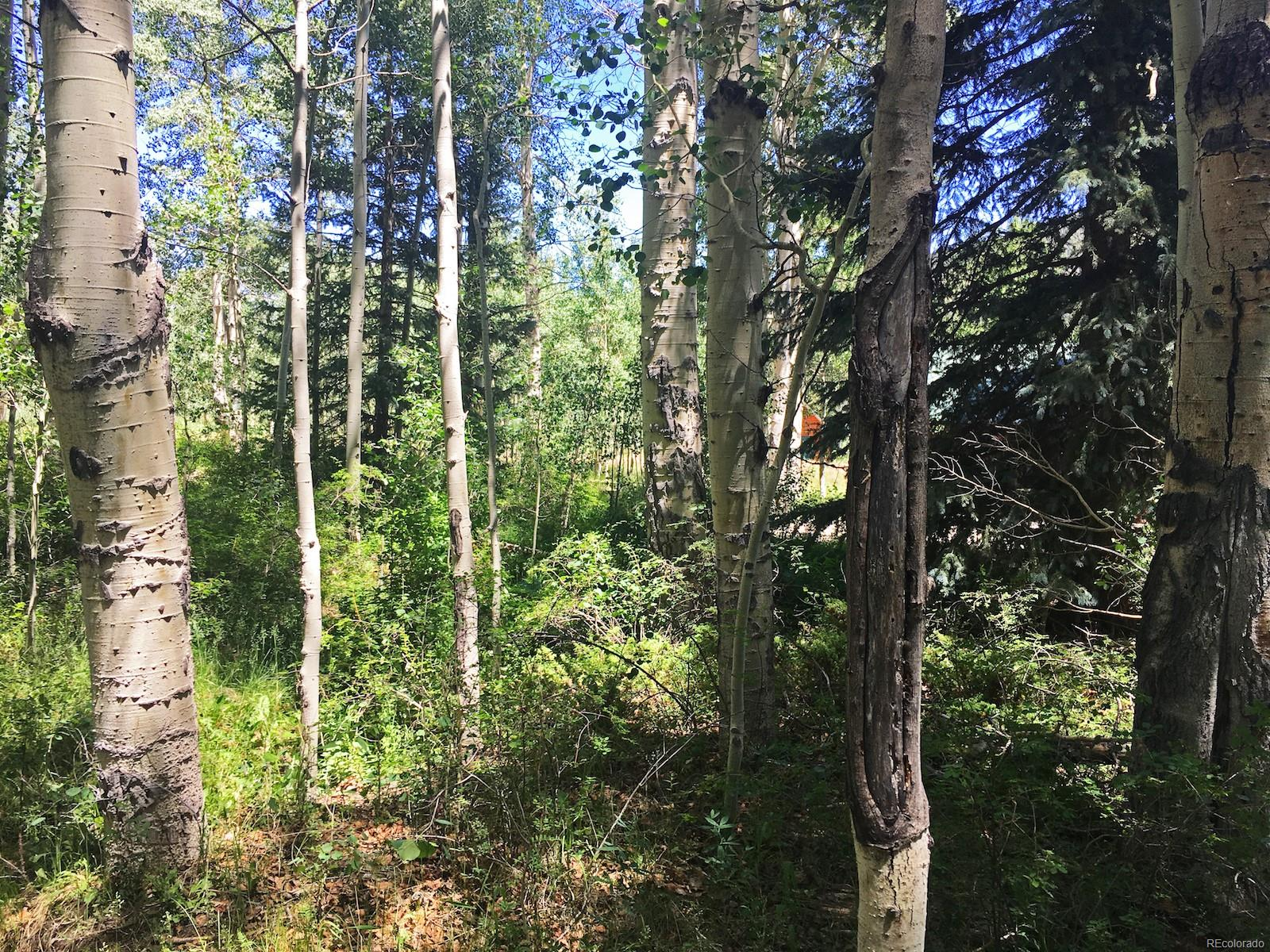 54 Deer Park Road, Antonito, CO 81120 - Antonito, CO real estate listing