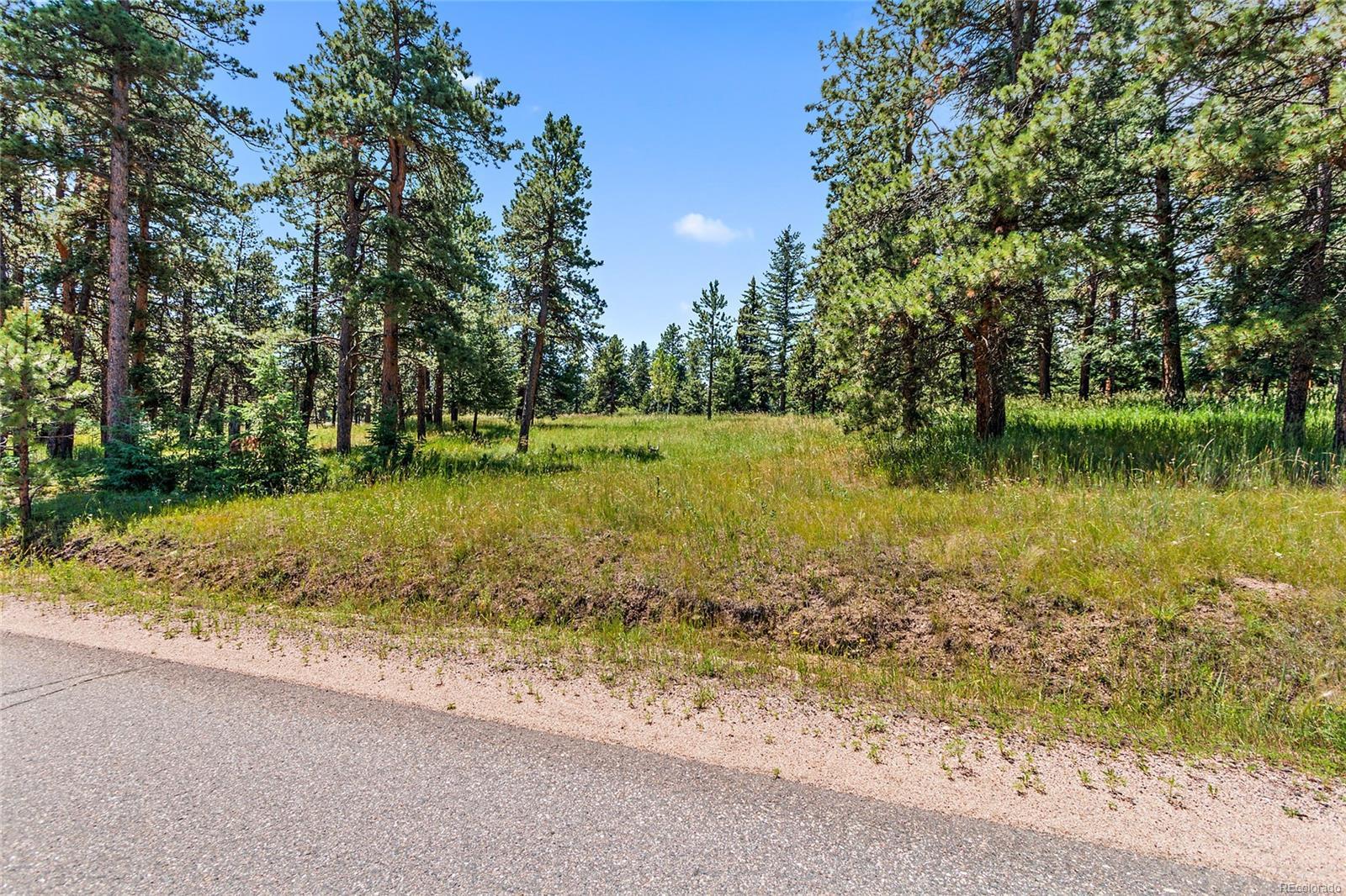 Evergreen Meadows Real Estate Listings Main Image