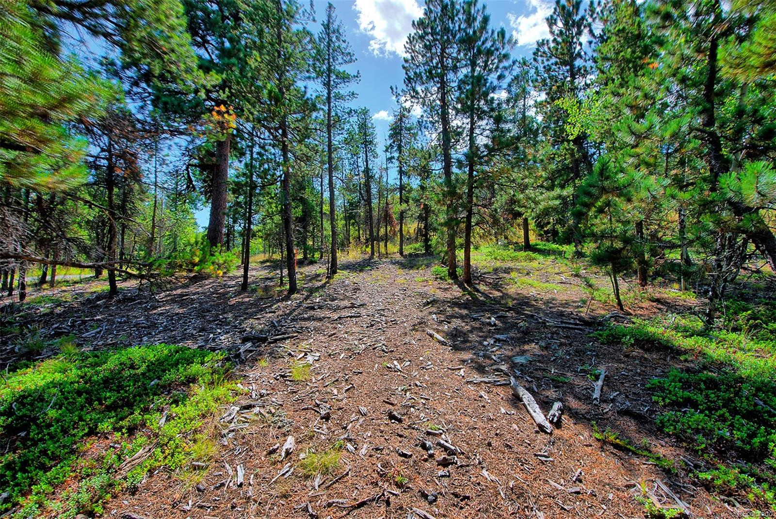 1 Mountain Estate Drive, Evergreen, CO 80439 - Evergreen, CO real estate listing