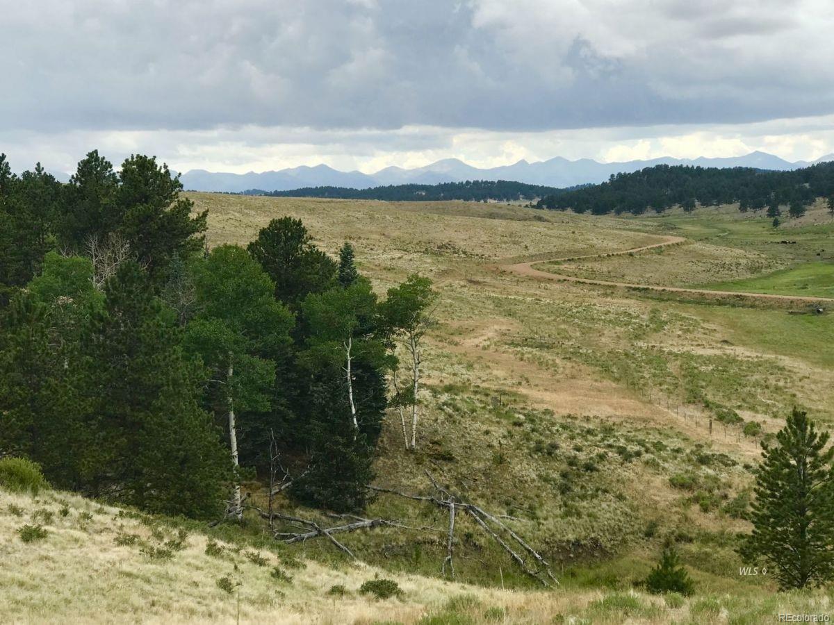Eagle Springs Ranch Real Estate Listings Main Image