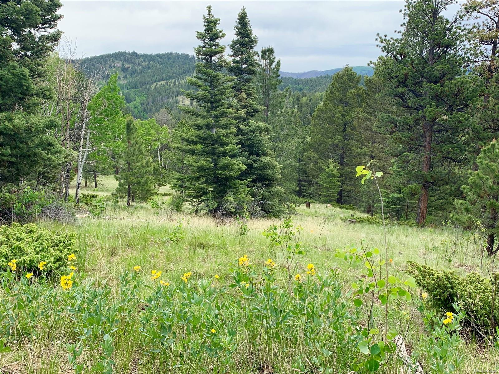Eagle Springs Ct., Westcliffe, CO 81252 - Westcliffe, CO real estate listing