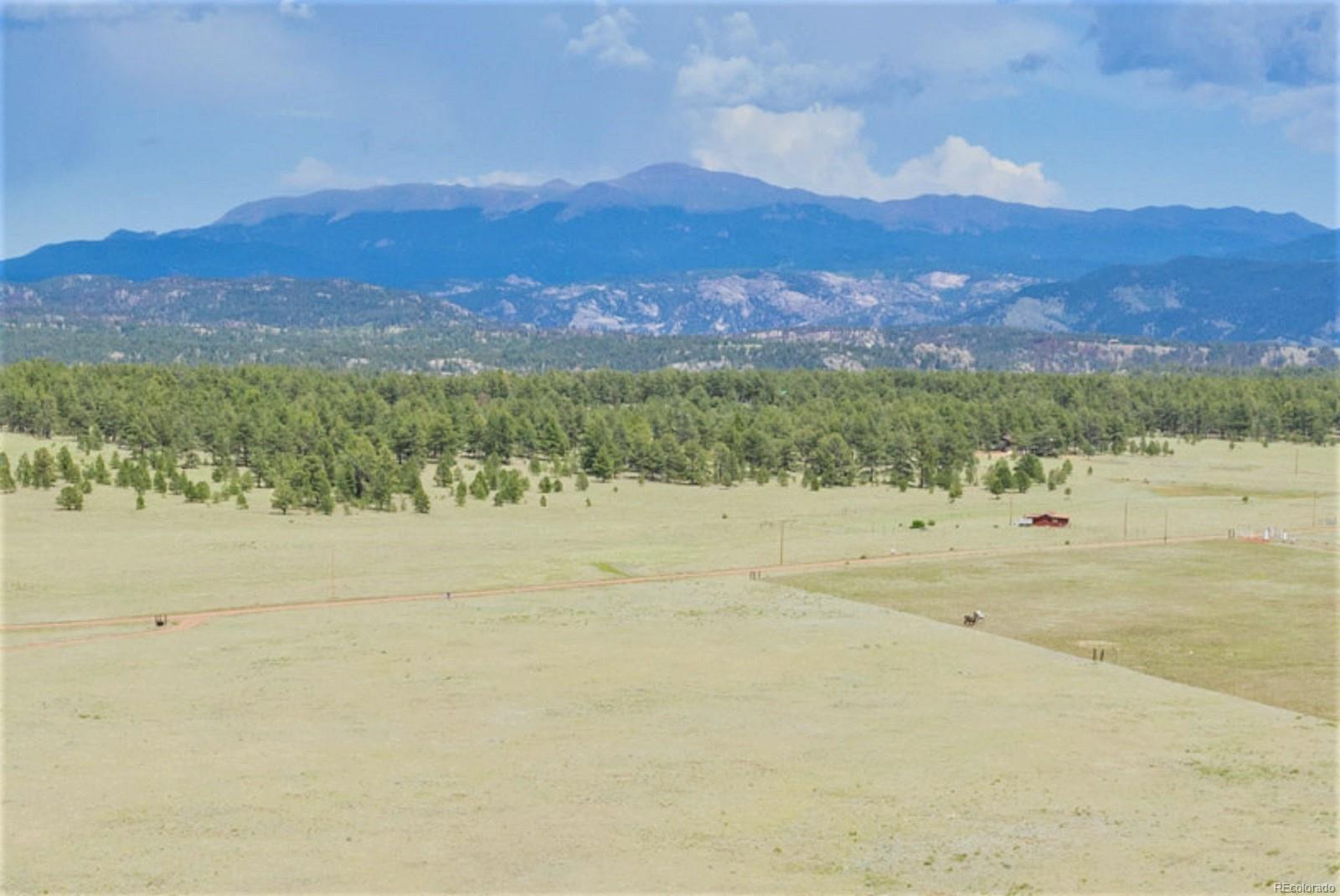 Four Mile Ranch 2600 In Guffey In Park County Real Estate Listings Main Image