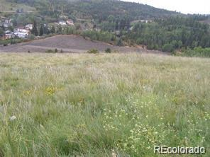 Stub Tail, Central City, CO 80427 - Central City, CO real estate listing