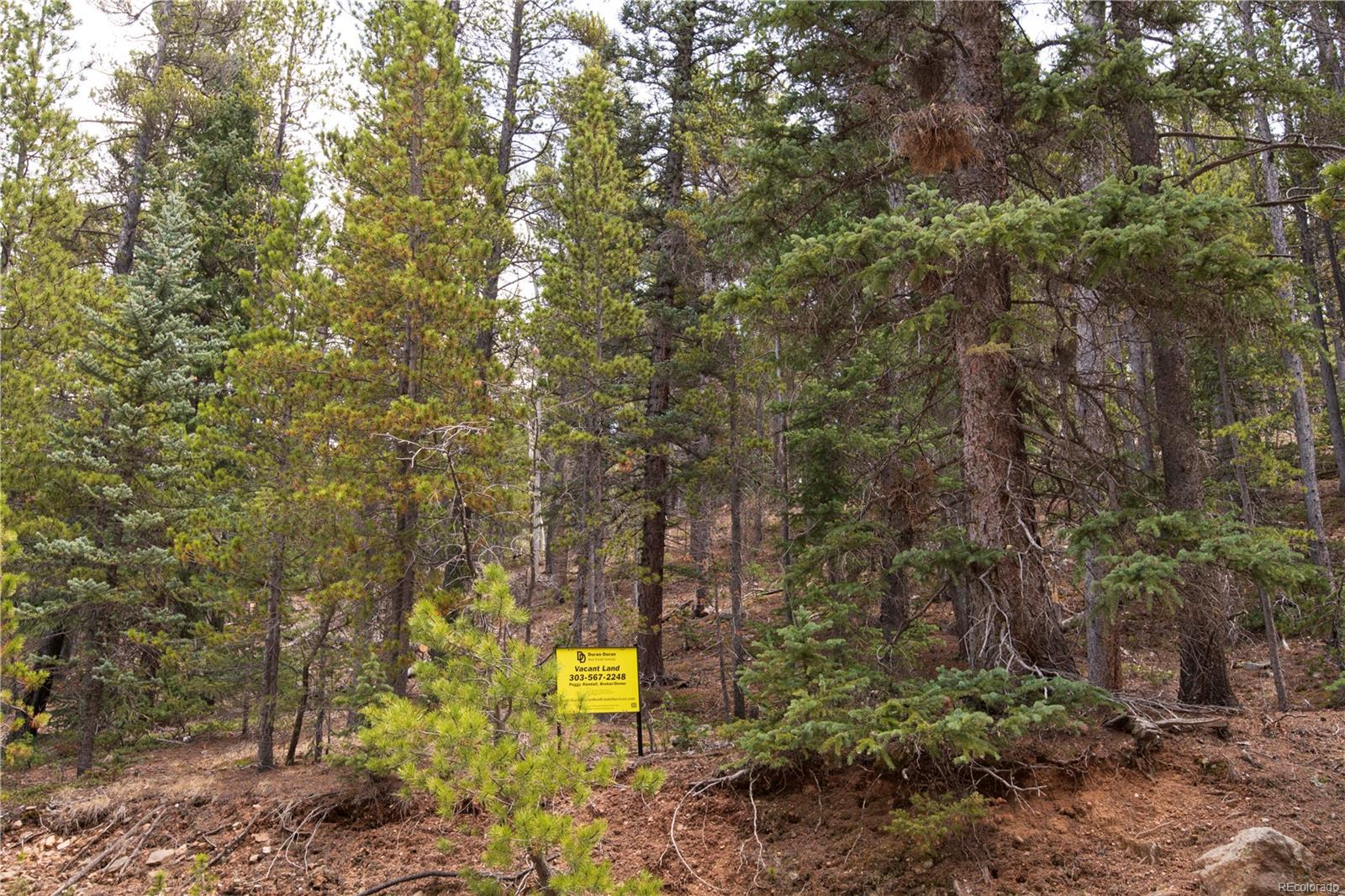 0000 Soda Creek Trail, Idaho Springs, CO 80452 - Idaho Springs, CO real estate listing