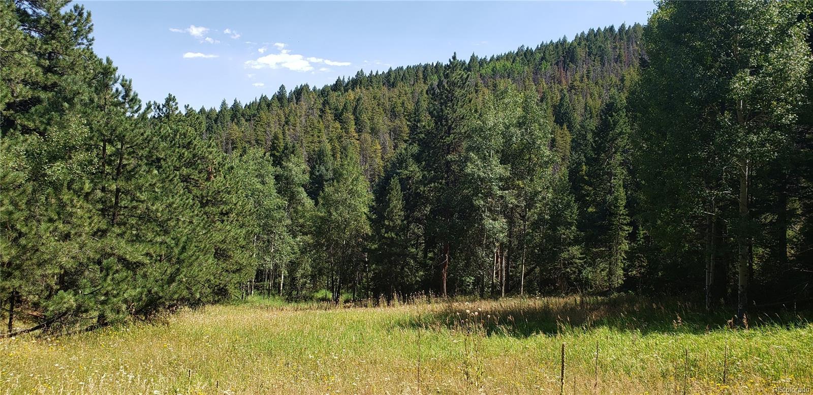 00 Indian Springs Road, Conifer, CO 80433 - Conifer, CO real estate listing