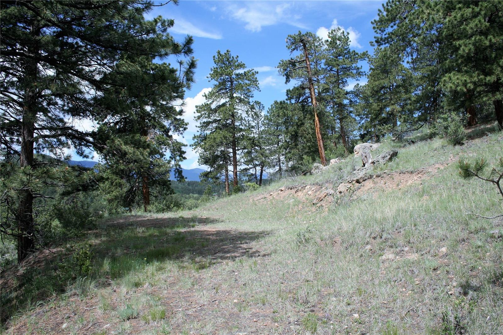 1845 County Road 72, Bailey, CO 80421 - Bailey, CO real estate listing