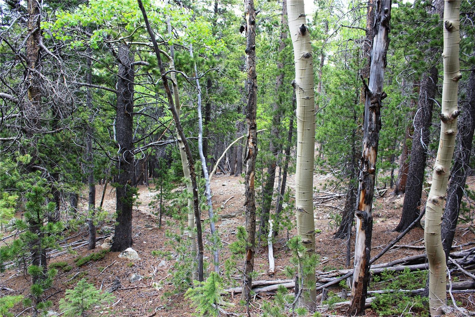 00 Virginia Canyon Road, Central City, CO 80427 - Central City, CO real estate listing