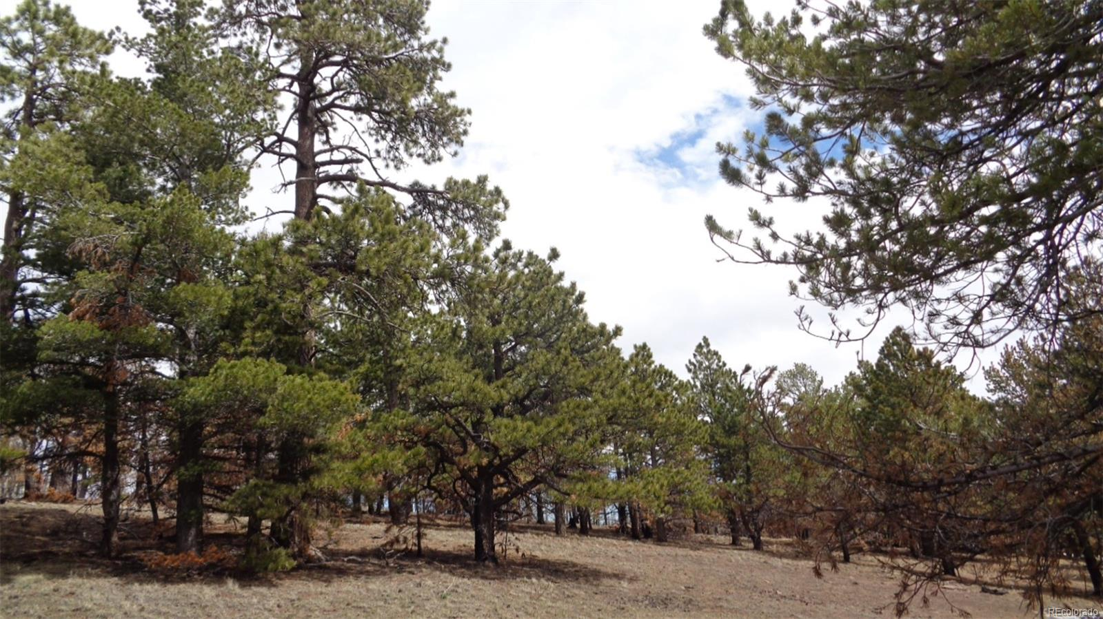2117 Packer Place, Fort Garland, CO 81133 - Fort Garland, CO real estate listing