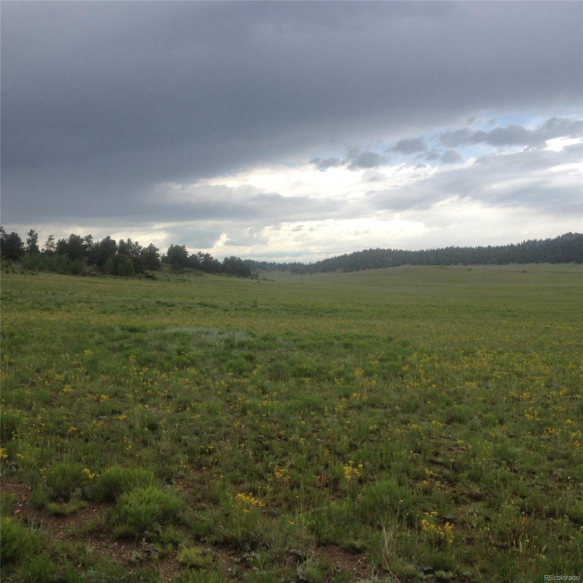 001 Dog Chief Trail, Hartsel, CO 80449 - Hartsel, CO real estate listing