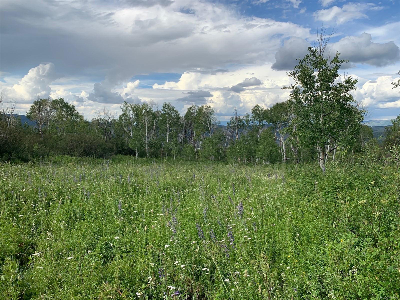 Harrison Creek Road, Collbran, CO 81624 - Collbran, CO real estate listing