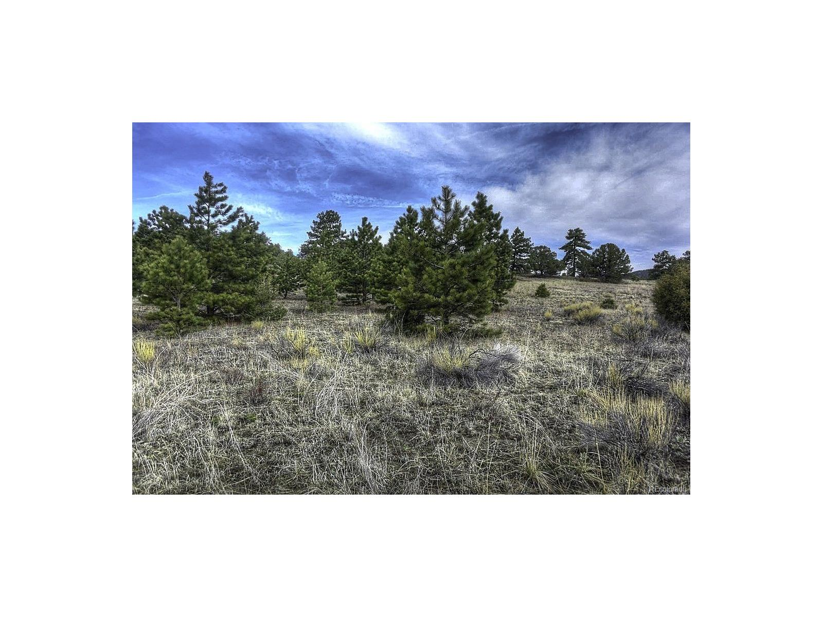 185 Big Bow Dr., Cotopaxi, CO 81223 - Cotopaxi, CO real estate listing