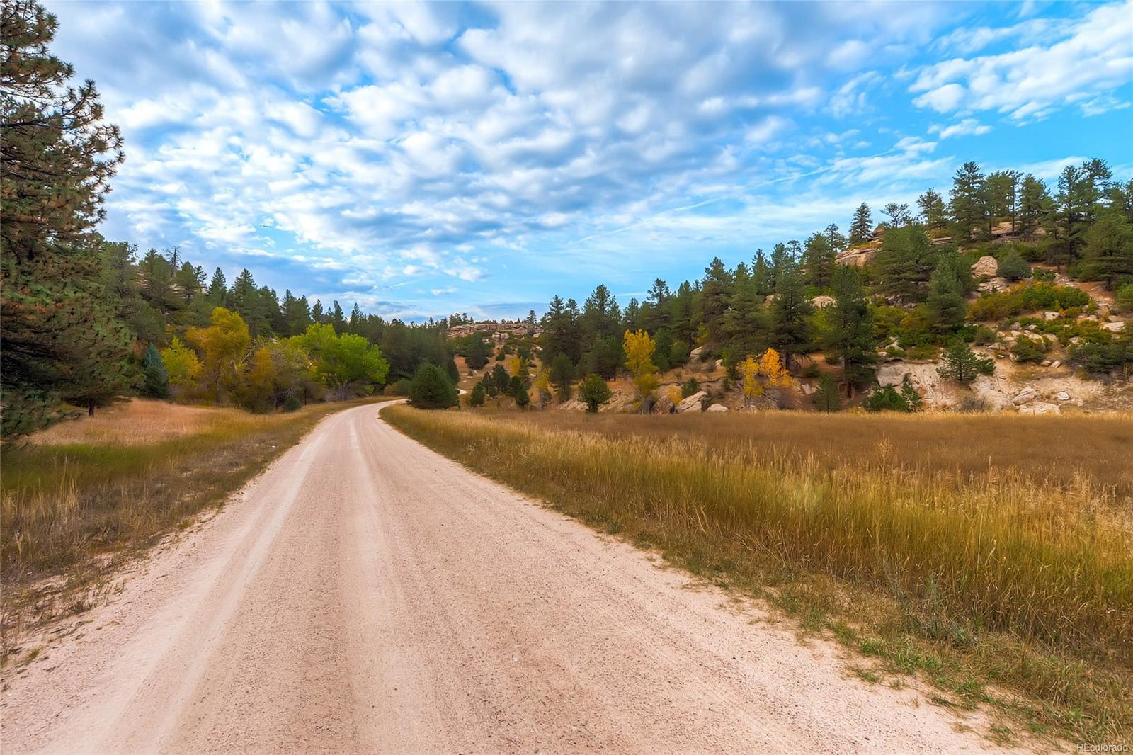 6585 Lost Canyon Ranch Road, Castle Rock, CO 80104 - Castle Rock, CO real estate listing