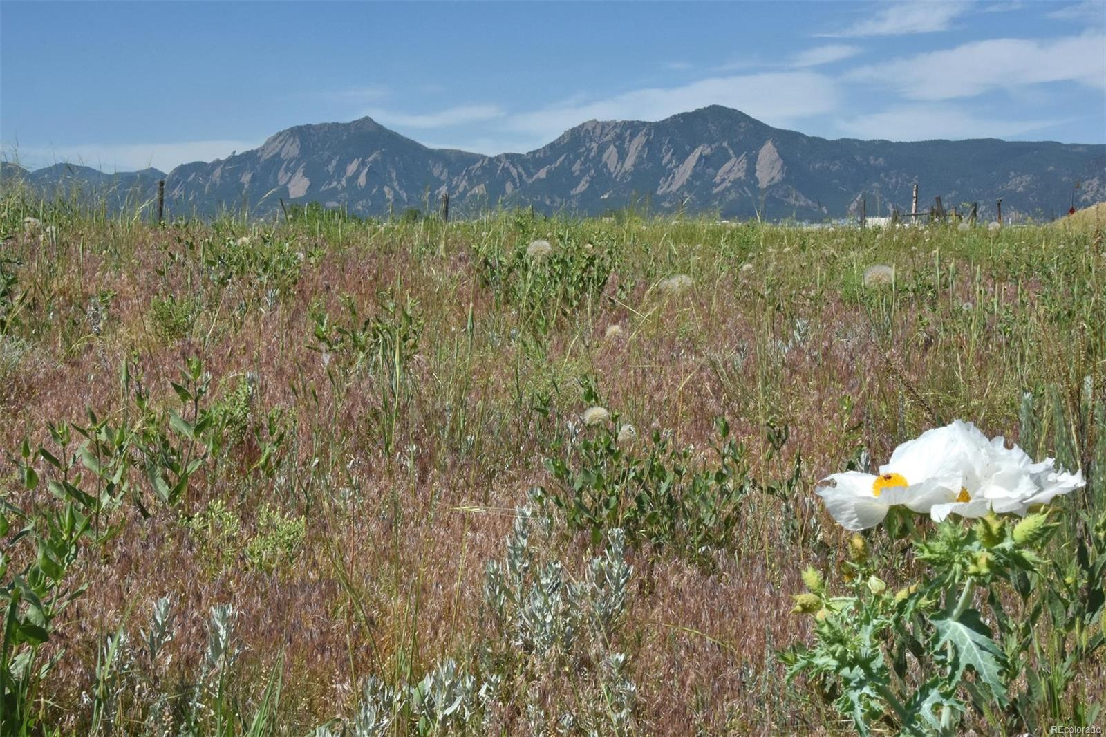 5864 Rustic Knolls Drive, Boulder, CO 80301 - Boulder, CO real estate listing
