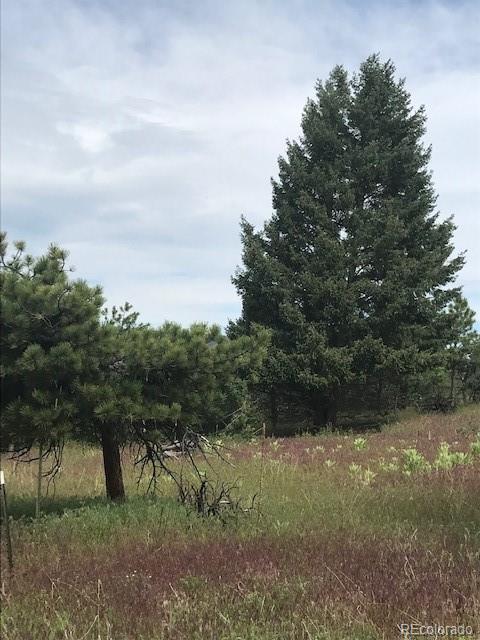 4593 Delaware Drive, Larkspur, CO 80118 - Larkspur, CO real estate listing