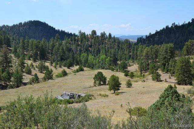 TBD Secluded Canyon Heights, Florissant, CO 80816 - Florissant, CO real estate listing